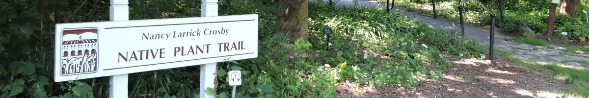 Entrance to Native Plant Trail with trees and Name Sign